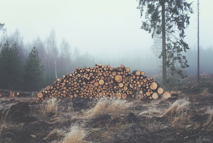 Kotly na drevo kedysi a dnes